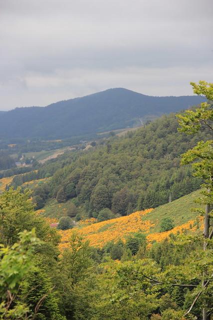 Vallée du Bonheur