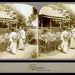 TWO GEISHA VISITING AN IRIS GARDEN ON A SUNNY DAY in OLD JAPAN (1) thumbnail