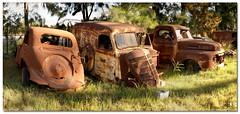 Old Car Graveyard (Panorama) (Panorama Paul) Tags: panorama soe cubism wijnlandautomuseum mywinners abigfave shieldofexcellence qualitypixels overtheshot oldcargraveyard joostenbergvlakte