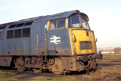 COND (Fray Bentos) Tags: england abandoned condemned disused locomotive scrapyard dieselhydraulic class52 d1028westernhussar swindonworks