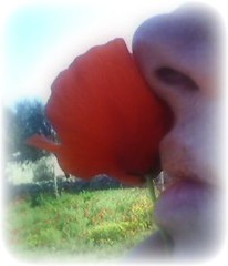 scent of red flower.. (dis[ o ]rient'express [I'm not there]) Tags: bodylanguage