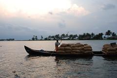 DSC_0229 (abucla) Tags: kerala alleppey keralabackwaters backwatershouseboat