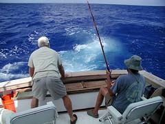 fishing bahamas wahoo