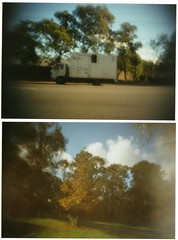 homemade pinhole camera photos (hey b-enjamin!) Tags: pin hole camera results nature trees ripper mindy border collie jack russell ringwood bmx truck fish tub