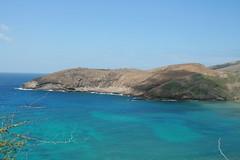 06280844 (tenmylove) Tags: vacation hawaii travels oahu pacificocean honolulu hanaumabay naturepreserve
