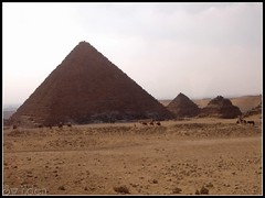 Pyramids in Egypt (The SW Eden (สว อิเฎล)) Tags: pyramid egypt camel sw pyramids eden ridding camels