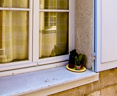 A window in Chartres