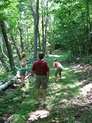 In the woods, playing some frisbee golf