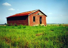 Red Tenant Farmhouse (Brian Brown Photography/Vanishing Media) Tags: camera red abandoned film farmhouse rural 35mm ga georgia photo image country picture photograph shack southgeorgia desolate isolated tarpaper sharecropper farmhouses sharecropping vanishingsouthgeorgia copyrightbrianbrown