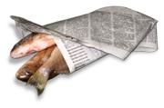 fish wrapper-1
