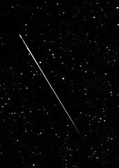 Perseid Meteor 8/12/08