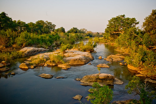Landscape at Kruger