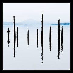 Timber Pond Posts (NorthernXposure) Tags: water reflections river square scotland clyde greenock timber calm posts ponds portglasgow