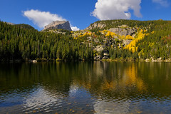The Gold Season at Bear Lake (Fort Photo) Tags: autumn lake reflection fall nature water yellow landscape nationalpark nikon colorado nps co rmnp aspen missyou rockymountainnationalpark bearlake d300 xoxoxoxox nothdr abigfave