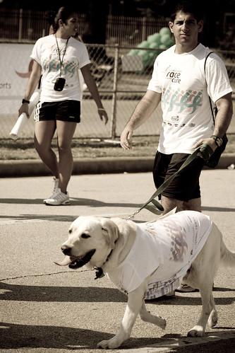 Man + Dog
