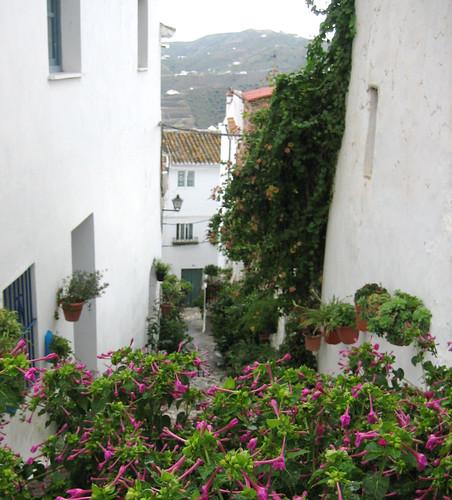 Canillas street