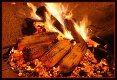 Mmmm... (Duru...) Tags: canon fire corn flame karadeniz rize mısır alev ateş ikizdere 400d canoneos400d flickrlovers