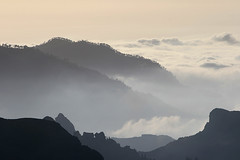 Misty (Katka S.) Tags: sea mountain mountains colour misty clouds forest silver islands evening spain foto erasmus deep competition canarias medal atlantic espana gran canary 2008 islas canaria llp aplusphoto fotocompetition fotocompetitionbronze fotocompetitionsilver fotocompetitiongold