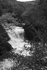 Falls of Leny 1 (Andy Magee) Tags: blackandwhite andy water river scotland waterfall whitewater trossachs callander magee fallsofleny andymagee