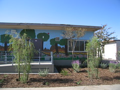 bungalow mural and garden