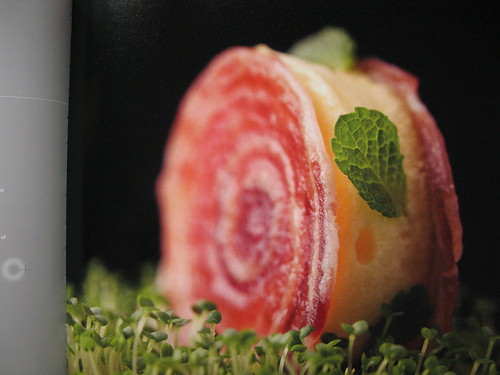 Alinea Cookbook: photos