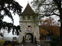 Castillo Laufen (Cataratas del Rhin, Suiza)
