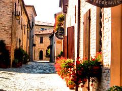 MONTEGRIDOLFO (RN) - BORGO IN FIORE (Loris_l@_r@na) Tags: strada bologna fiori borgo romagna yourcountry lorisphoto