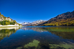Lac da Silvaplana (justfordream) Tags: lake mountains alps water landscape schweiz switzerland see wasser suisse berge alpen landschaft smrgsbord anawesomeshot aplusphoto ultimateshot vanagram goldenart novavitanewlife lacdasilvaplana