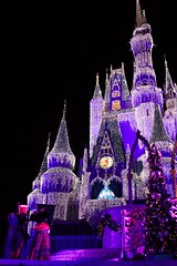 Holiday Castle Lights (Don Sullivan) Tags: holiday castle lights disneyworld icicle cinderella waltdisneyworld cinderellacastle ef2485mmf3545usm wdwmkmvmcp
