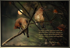You Are Worthy Our Lord and God... (honey 77) Tags: moon tree nature beautiful birds photoshop god jesus lord christian sensational limbs inspirational waxwing scriptures photoshopart bibleverse inspiks|inspirationalpictures artistictreasurechest revelation411