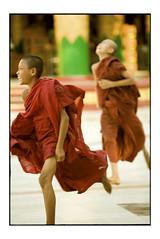 little monk' game (fly) Tags: asia yangon burma myanmar shwedagonpagoda rangoon earthasia fly simonkolton