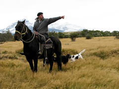 Pa alla al fondo y fierro las tablas... (J U A C O) Tags: chile horse cloud patagonia dog southamerica landscape caballo wind farm paisaje nubes estancia perros torresdelpaine felicidad gaucho puertonatales puertoconsuelo