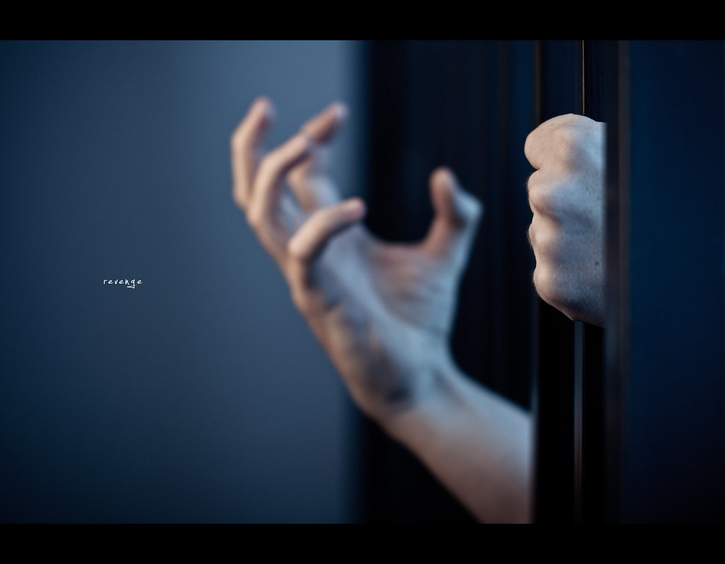 Project 365, Day 308, 308/365, Bokeh, Strobist, Sigma 50mm F1.4 EX DG HSM, revenge, dark, gloomy, bars, prison,