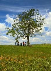 Uganda _DSC14909 (youngrobv) Tags: africa people tree nikon locals african uganda d200 popular ontheroad dx africans 0712 ugandan 18200mmf3556gvr ugandans youngrobv goldstaraward dsc14909