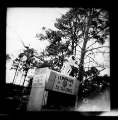 Lemonade Alien (perrygrl) Tags: bw holga florida coastal panhandle eastpoint northflorida silvergelatinprints