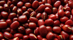 aduki beans (The Neepster) Tags: red food beans 7daysofshooting filltheframefriday week36food adukibeans