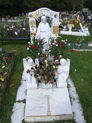 Epsom Downs Cemetery #7