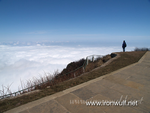 Staring at the sea of clouds