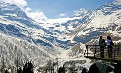 Palü Glacier (stefanrechsteiner) Tags: schweiz switzerland flickr view bernina graubünden grisons valposchiavo alpgrüm palüglacier