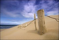 Sky Sand Sea Sticks Shadows Strandhill Sligo (Tony Murphy) Tags: sea summer sky sticks sand shadows sligo blueribbonwinner strandhill platinumphoto