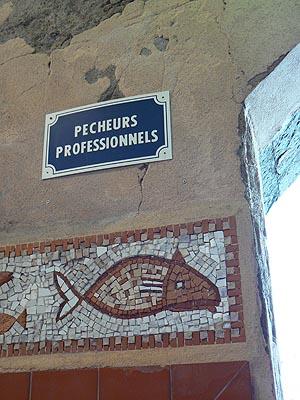 pêcheurs prpofessionnels.jpg