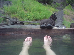 Soaking Out the Storm (joshredux) Tags: dogs outdoors hiking idaho hotsprings joshuajames slatecreek snra whitecloudmtns
