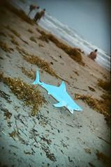 land shark! (EllenJo) Tags: travel blue usa film beach gulfofmexico toy shark holga lomo texas tx july roadtrip tourists colorsplashflash shore atthebeach 4thofjuly familyreunion 2008 foundobject southpadreisland texasgulfcoast holga35mm whatididonmysummervacation holga135 abandonedtoy july2008 southerntexas summer2008 ellenjo holga135bc ellenjoroberts ellenjdroberts packheiserfamilyreunion