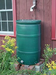 Making a home Made Rain Barrel - The Result