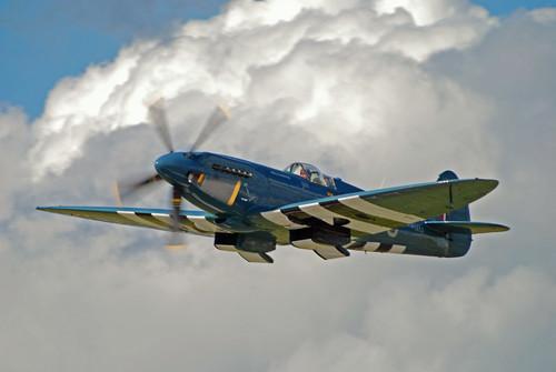 Warbird picture - Suprmarine Spitfire
