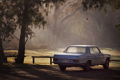 Mercedes-Benz (SAMUEL CHISHOLM) Tags: morning car hope australia vacant adelaide merc nightafter