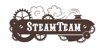 Steam Team Official Logo (small)