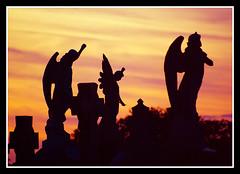 Angels (veggiesosage) Tags: nottingham sunset graveyard silhouette memorial cemetary angels aficionados pentaxa70210mmf4 andyplattveggiesosage