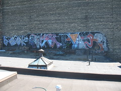 toronto 08 (VANDAL TEAM SUPREME) Tags: dead zoo acid already pz vear causr