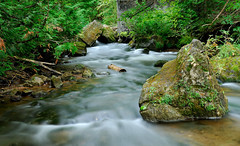 Hoggs Falls stream (ff151) Tags: ontario canada water nikon stream falls waterfalls d200 flesherton hoggs mywinners abigfave anawesomeshot damniwishidtakenthat ff151